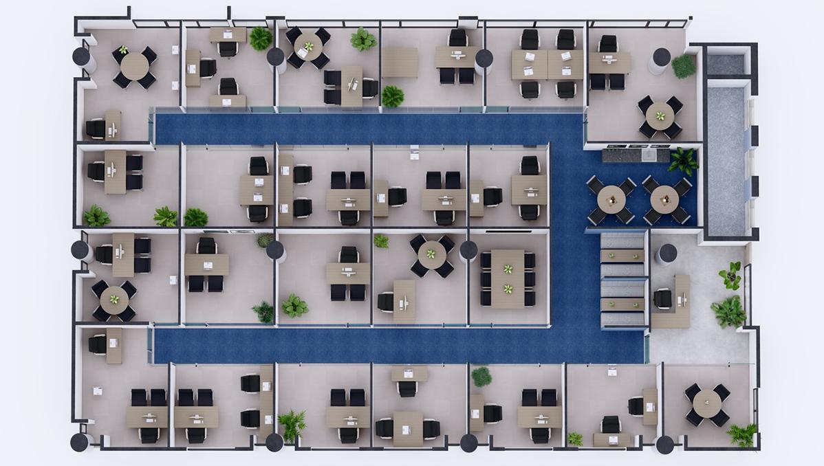 layout ESC